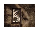 Palm View II Giclee-trykk av C. J. Groth