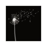 Into the Night II Giclée-tryk af Jim Wehtje