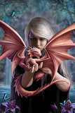 Anne Stokes - Dragonkin Poster