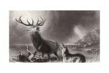 The Stag at Bay Giclée-tryk af Edwin Henry Landseer