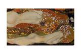 Water Serpents II, 1904-07 Gicléedruk van Gustav Klimt