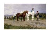 Pyrenees Farmers Market Bound, 1884 Giclee Print by Rosa Bonheur