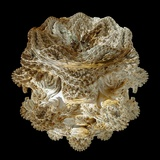 Mandelbulb Fractal Reproduction photographique par Laguna Design