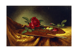 Roses on a Palette, 1880's Giclee Print by Martin Johnson Heade