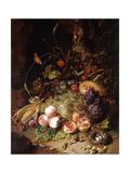 Still-Life with Fruit and Insects Lámina giclée por Rachel Ruysch