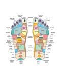 Reflexology Foot Map, Artwork Fotografie-Druck von Peter Gardiner