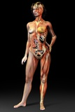 Female Body, Artwork Fotografie-Druck von Jose Antonio