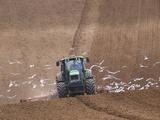 Sowing a Cereal Crop In Mid March Valokuvavedos tekijänä Adrian Bicker