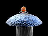 Nanorobot on Pin Reproduction photographique par Christian Darkin