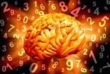 Brain, Conceptual Artwork Valokuvavedos tekijänä Victor De Schwanberg