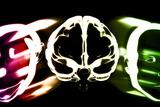 Primate Brain Evolution Reproduction photographique par Christian Darkin