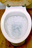Toilet Being Flushed Reproduction photographique par Victor De Schwanberg