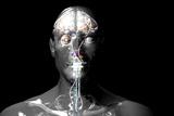 Cyborg Reproduction photographique par Christian Darkin