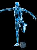 Skeleton Playing Football Fotografisk trykk av Roger Harris