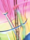 Laboratory Glassware Fotografisk tryk af Tek Image