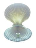 Scallop Shell And Pearl Lámina fotográfica por Gavin Kingcome