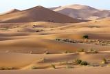 Saharan Sand Dunes Fotoprint van Bob Gibbons