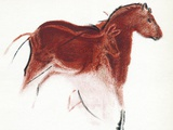 Cave Painting of Horse And Hind, Artwork Photographic Print by Sheila Terry