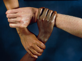 Linked Hands Photographic Print by Tony McConnell