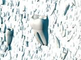 Teeth Photographic Print by David Mack