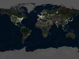 Whole Earth At Night, Satellite Image Fotografisk tryk af  PLANETOBSERVER
