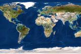 Whole Earth Map Fotografisk tryk af  PLANETOBSERVER