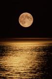 Mondaufgang Fotografie-Druck von David Nunuk