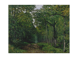 The Avenue of Chestnut Trees at La Celle-Saint-Cloud, 1867 Giclee Print by Alfred Sisley