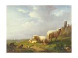 Sheep and Chickens in a Landscape, 19th Century Giclée-tryk af Eugene Joseph Verboeckhoven