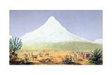 T.1607 Chimborazo, from 'Views of Nature', Pub. C.1850 Giclée-Druck von Friedrich Alexander, Baron Von Humboldt