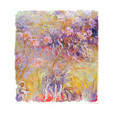 Impression: Flowers Giclee Print by Claude Monet