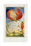 Infant Joy: Plate 25 from Songs of Innocence and of Experience C.1815-26 Reproduction procédé giclée par William Blake