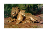 The Lions at Home, 1881 Giclee Print by Rosa Bonheur
