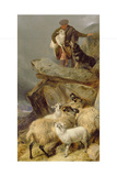 The Rescue, 1883 Giclee Print by Richard Ansdell