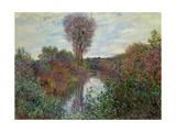 Small Branch of the Seine, 1878 Giclée-Druck von Claude Monet