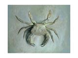 Velvet Crab, 1870-1 Giclee Print by John Ruskin