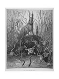 The Hare and the Frogs, from 'The Fables' of La Fontaine, Engraved by Stephane Pannemaker… Giclée-tryk af Gustave Doré