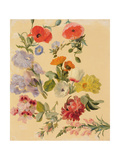 Studies of Summer Flowers Giclee Print by Jacques-Laurent Agasse
