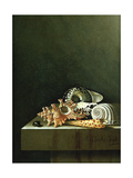 A Still Life of Shells, 1698 Giclee Print by Adrian Coorte