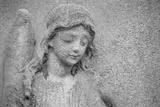 Tête d'ange Reproduction photographique par  French School