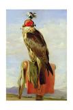 Hooded Falcon Giclée-tryk af Edwin Henry Landseer
