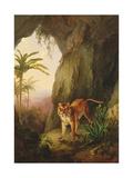 Tiger in a Cave, C.1814 Giclée-Druck von Jacques-Laurent Agasse