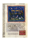 Fol.115V from 'The Rothschild Miscellany', Northern Italy, C.1450-80 Giclee Print