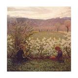 Flowering Meadow Giclee Print by Giuseppe Pellizza da Volpedo
