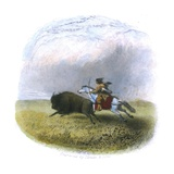 Buffalo Hunt, Engraved by Tilman and Sons, 1853 Giclee Print by Seth Eastman