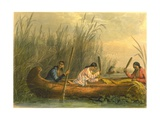 Gathering Wild Rice, 1853 Giclee Print by Seth Eastman