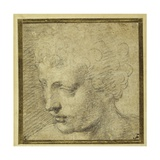 Head of a Boy, Nearly in Profile to the Left Gicléetryck av Parmigianino,