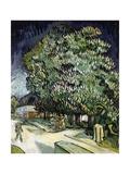Chestnut Trees in Blossom, Auvers-Sur-Oise, 1890 Giclee-trykk av Vincent van Gogh