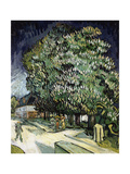 Chestnut Trees in Blossom, Auvers-Sur-Oise, 1890 Giclee Print by Vincent van Gogh