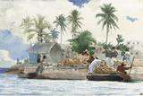 Sponge Fisherman, Bahamas Gicléetryck av Winslow Homer